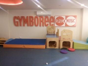 Gymboree (40)