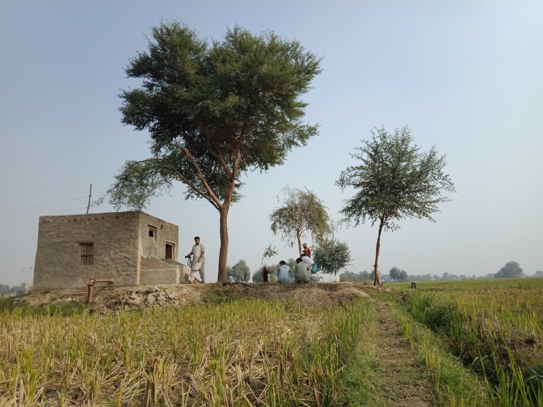 Ber Sharif Village